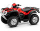 500 FOURTRAX 2009 TRX500FPA9